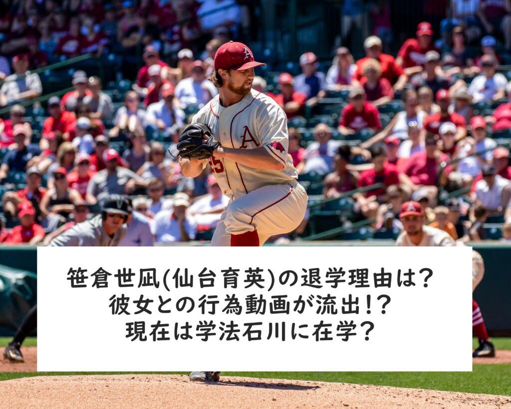 仙台 育英 野球 部 笹倉